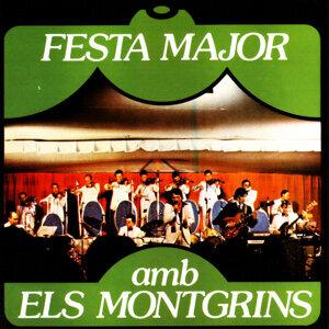L'Orquestra Montgrins 歌手頭像