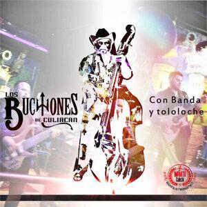 Los Buchones de Culiacan 歌手頭像