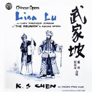 Lisa Liu 歌手頭像