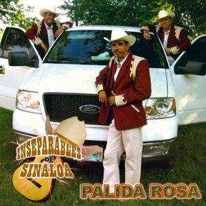 Inseparables De Sinaloa 歌手頭像