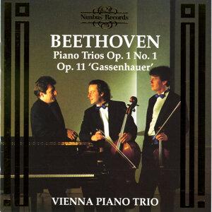 Vienna Piano Trio 歌手頭像