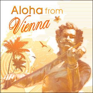 Johann Lieber & Hawaiian Guitar Quartet 歌手頭像