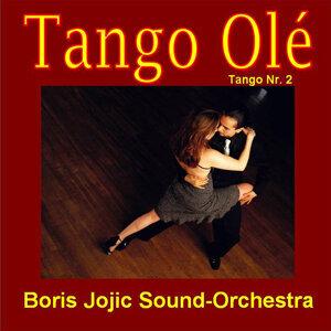 Boris Jojic Sound Orchestra 歌手頭像