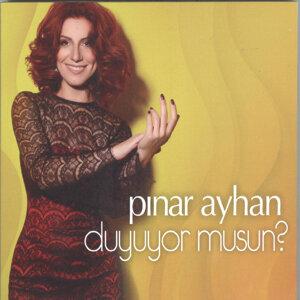 Pinar Ayhan