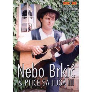 Nebo Brkic 歌手頭像