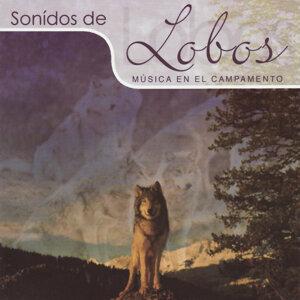 Sonidos de Lobos 歌手頭像