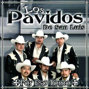 Los Pavidos De San Luis 歌手頭像