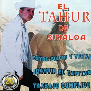 El Tahur de Sinaloa 歌手頭像