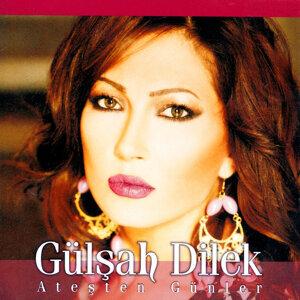 Gülşah Dilek 歌手頭像