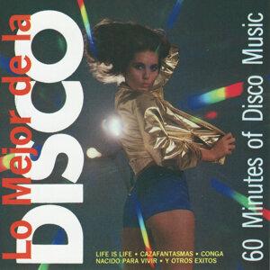 Miami Disco Kings 歌手頭像