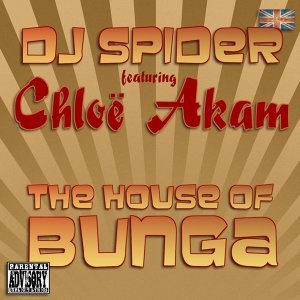 DJ Spider 歌手頭像