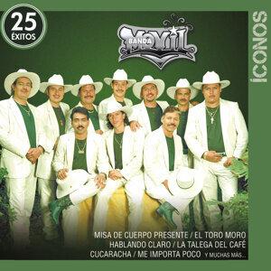 Banda Movil 歌手頭像