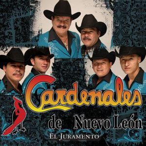 Los Cardenales De Nuevo Leon 歌手頭像