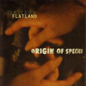 Flatland 歌手頭像