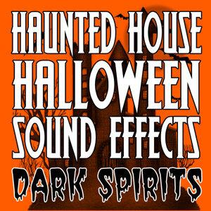 Dark Spirits 歌手頭像