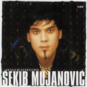 Sekib Mujanovic