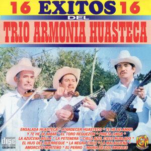 Trio Armonia Huasteca 歌手頭像