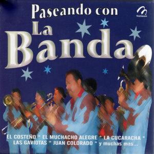 Banda Sinaloense 歌手頭像