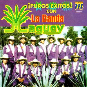 La Banda Maguey 歌手頭像