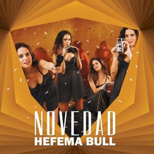 Hefema Bull