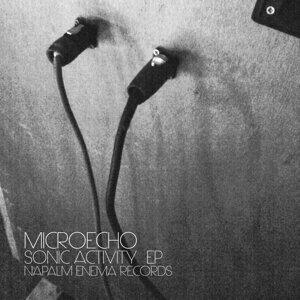 Microecho 歌手頭像