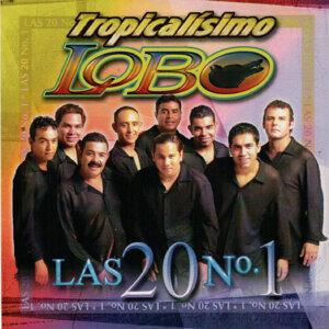 Tropicalísimo Lobo 歌手頭像