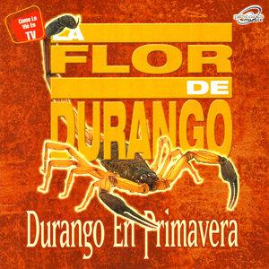 La Flor De Durango 歌手頭像