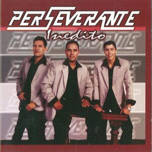 Perseverante 歌手頭像