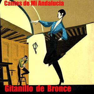 Gitanillo de Bronce 歌手頭像