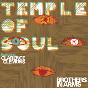 Temple of Soul 歌手頭像