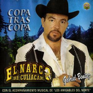 El Narco De Culiacan 歌手頭像