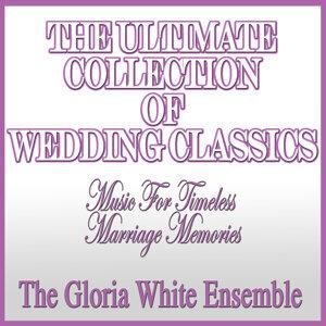 The Gloria White Ensemble, Franklin Pound 歌手頭像