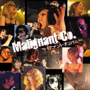 Malignant Co. 歌手頭像