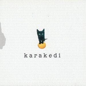 Grup Karakedi 歌手頭像