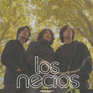 Los Necios