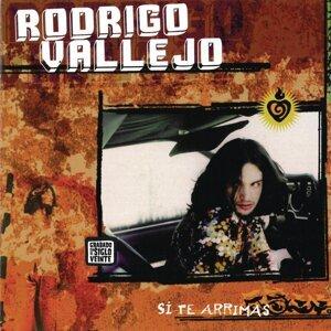 Rodrigo Vallejo 歌手頭像
