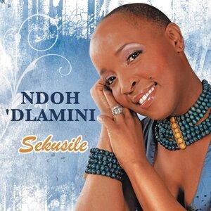 Ndoh Dlamini 歌手頭像