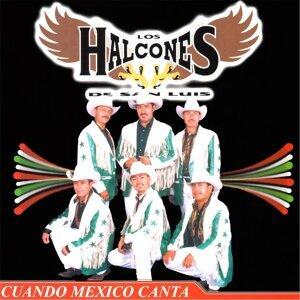 Los Halcones De San Luis