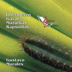 Gustavo Morales 歌手頭像