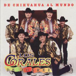 Los Corales de Juarez 歌手頭像