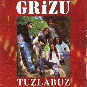 Grizu 歌手頭像