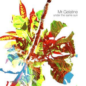 Mr Gelatine