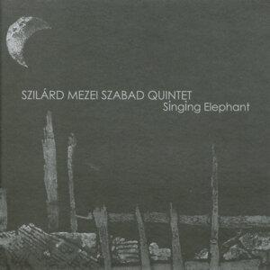 Szilard Mezei Quintet 歌手頭像