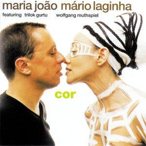 Maria João & Mário Laginha 歌手頭像