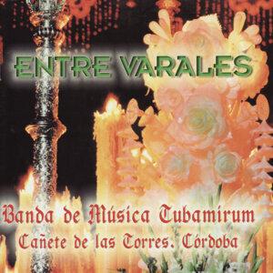 Banda de Música Tubamirum 歌手頭像