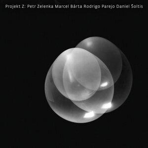 Projekt Z 歌手頭像