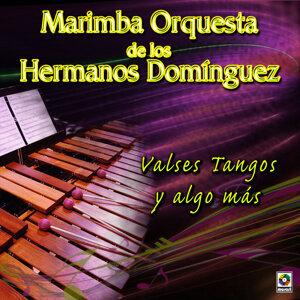 Marimba Orquesta De Los Hnos. Dominguez