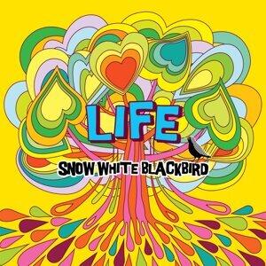SNOW WHITE BLACKBIRD 歌手頭像