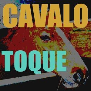 Toques Para Telemovel 歌手頭像