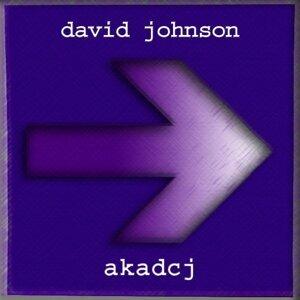 David Johnson 歌手頭像